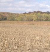 field harvest no lettering